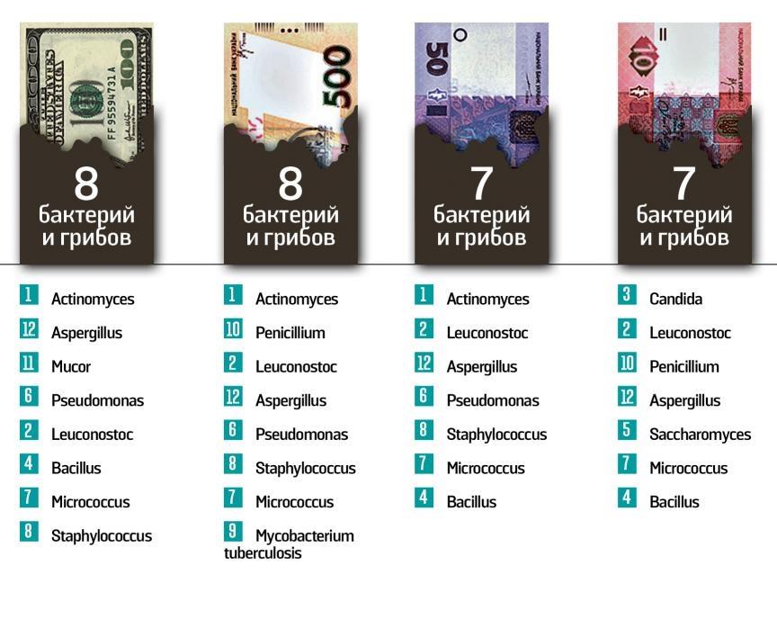 Украинские деньги очень грязные