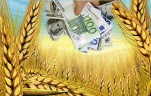 Правительство знает что может поднять украинскую экономику