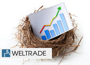 weltrade system forex