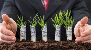 Отчет по ПАММ-Инвестициям
