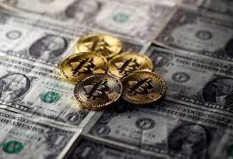 8% населения Америки владеет криптовалютой