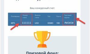 Конкурс «HOT 100» на ДЕМО-счетах от Weltrade