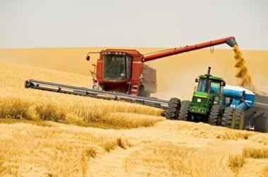 Аграрии смогли увеличить объемы привлеченных кредитов до 6 млрд. гривен