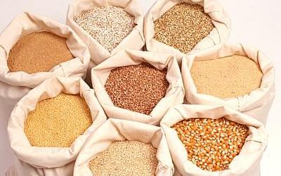До конца 2013 года Украина заработает 176 млрд. гривен от продажи сельхозпродукции