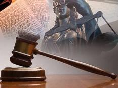 Суд арестовал губернатора-самозванца Губарева на два месяца