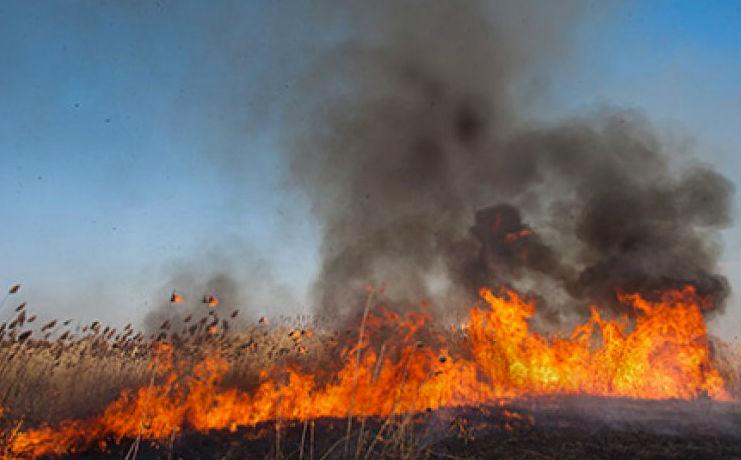 В хакасских степях вновь бушуют пожары