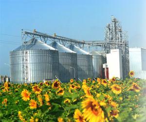 Билл Гейтс стал обладателем 5% акций украинского агрохолдинга