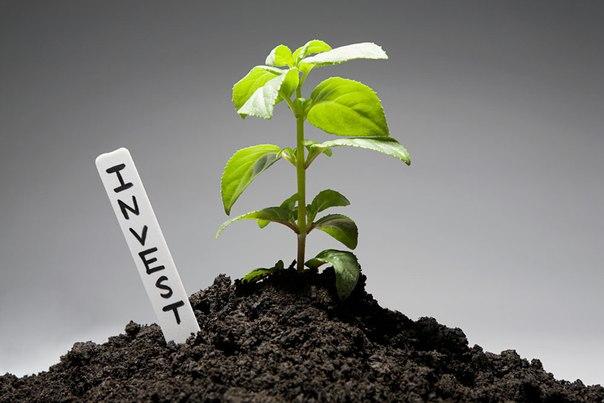 ПАММ-инвестиции Простофинансы (отчет 8й недели)