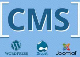Онлайн-бизнес: На какой CMS заказать разработку интернет-магазина?