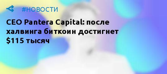 CEO Pantera Capital: через восемь месяцев биткоин достигнет $115 000