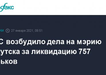 ФАС возбудило дела на мэрию Иркутска за ликвидацию 757 ларьков