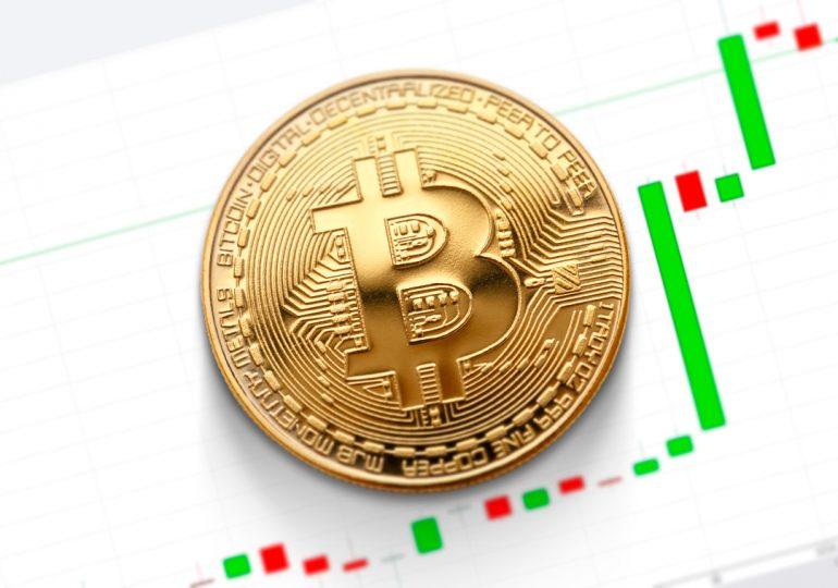 Гендиректор Pantera Capital ожидает взлета биткоина до $115 000 к августу 2021 года