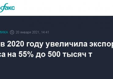 РФ в 2020 году увеличила экспорт мяса на 55% до 500 тысяч т