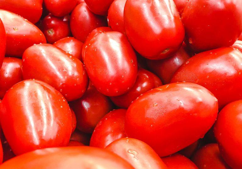 Россия частично запретила ввоз помидоров из Армении